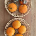 Oranges sans et avec Fridge Fresh
