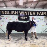 English Winter Fair 2017
